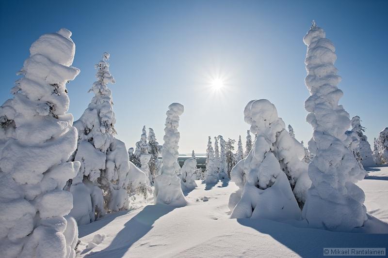 Riisitunturi in winter