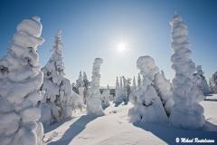 Riisitunturi, Posio, Finland (L132)