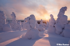 Riisitunturi, Posio, Finland (L229)