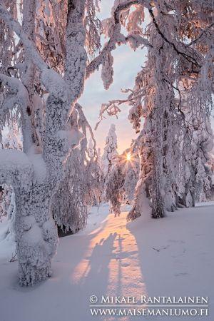 Konttainen, Kuusamo, Finland